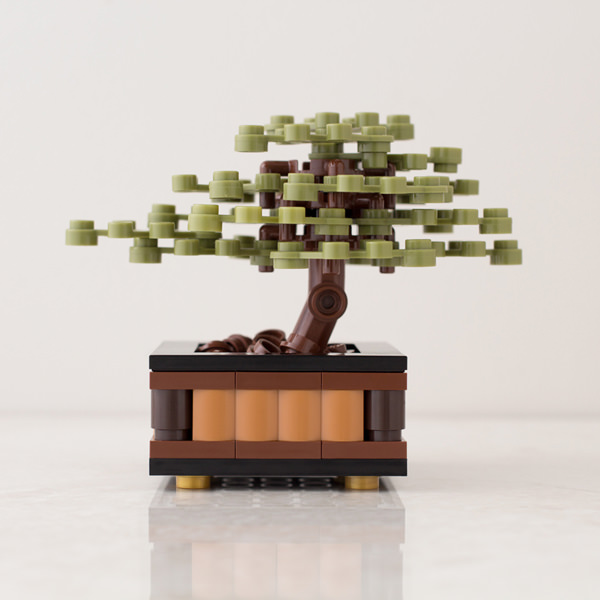 Bonsai-Juniper-Profile_original