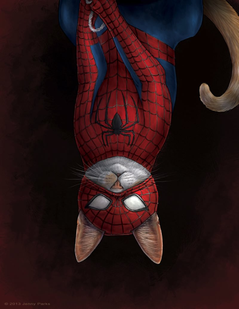 spideycatweb copy