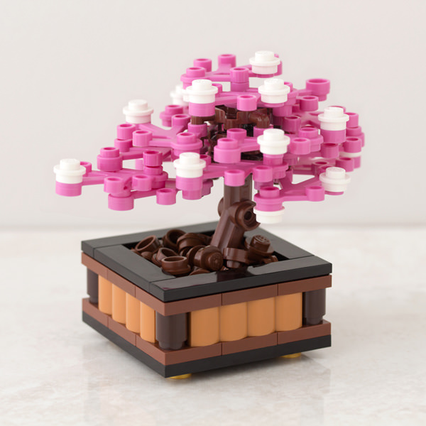 Bonsai-Cherry-May-8_original