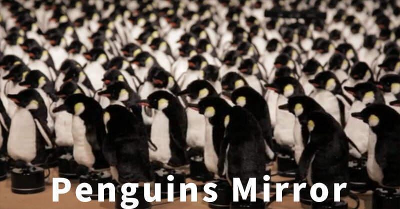 450個の人形のペンギンを使った変わったミラー