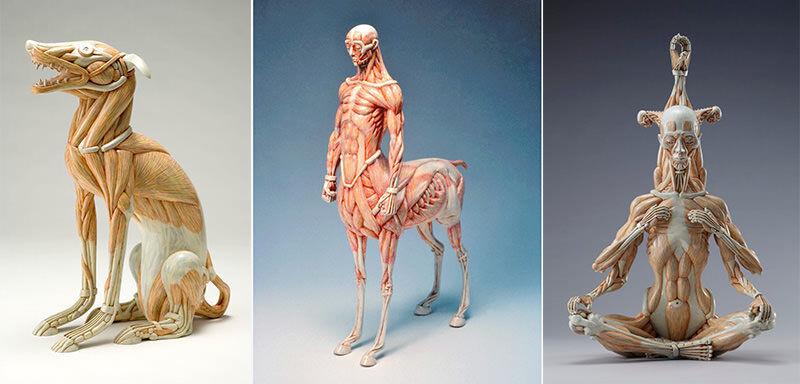 筋肉を表現した彫刻、木下雅雄のアートに見入る
