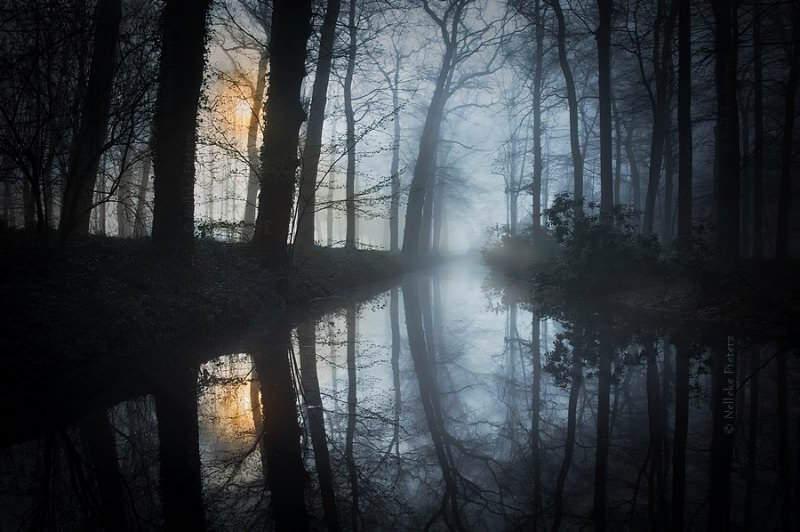 reflections_by_nelleke_pieters-156-800-800-100