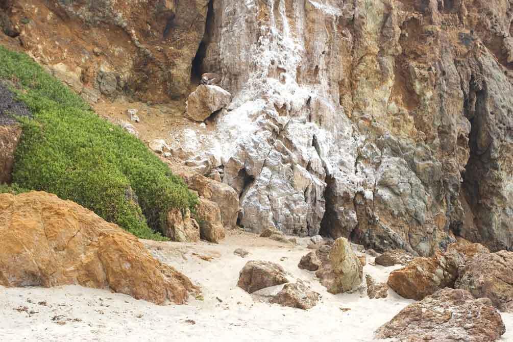 Calcium-Deposits-Point-Dume-Zuma-Beach-CA1