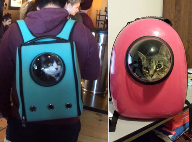 astronaut-pet-carriers-1