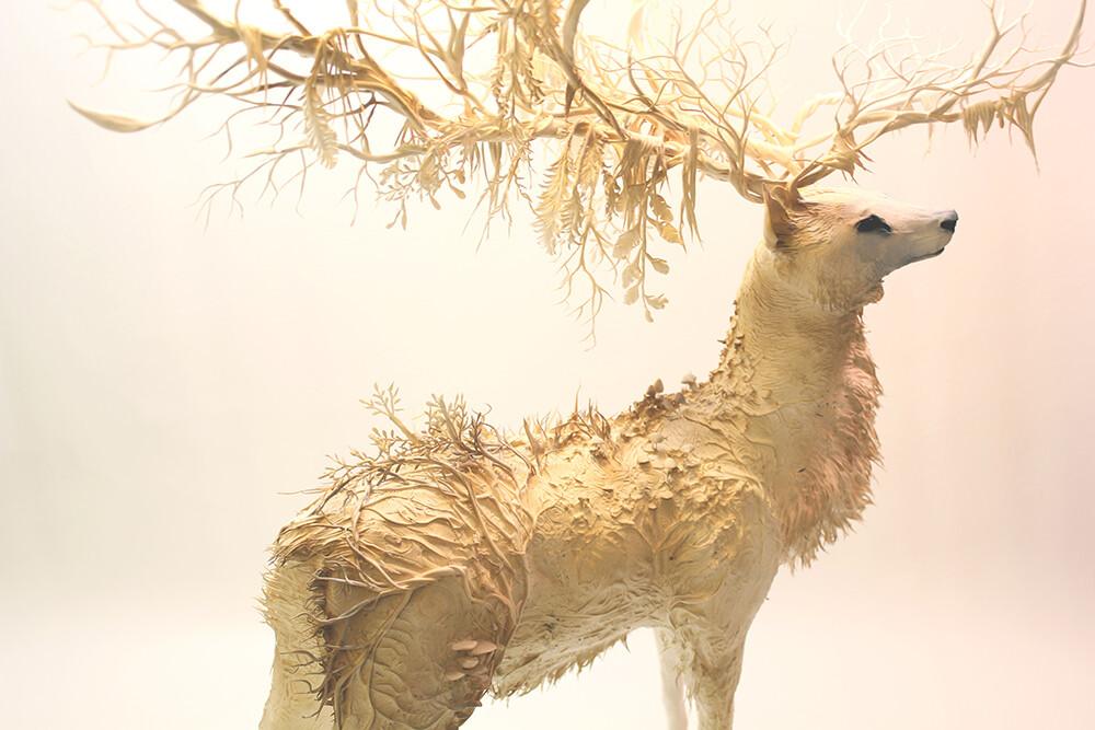 動物と植物を混ぜたような彫刻:Ellen Jewett