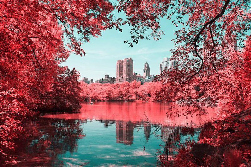 赤外フィルムで撮影されたニューヨークが素敵