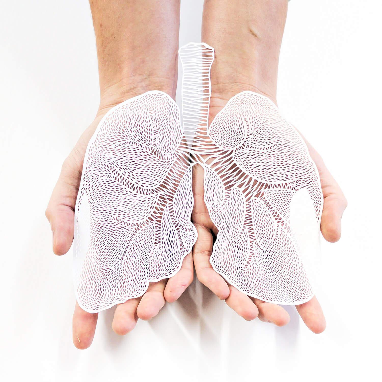 臓器の切り絵がめちゃくちゃエレガントなデザイン:Ali Harrison