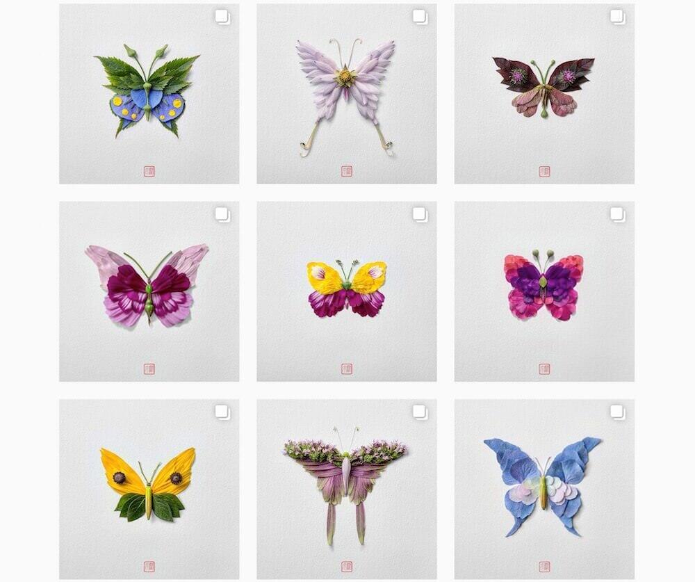 本物の植物を使って作られた美しい昆虫たち:Raku Inoue