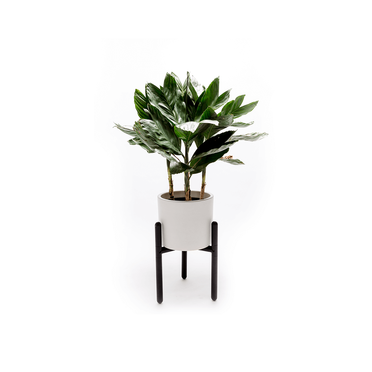 AA 004 Plant Stand 1920x